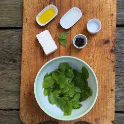 Rezept – Buchenblätter-Salat